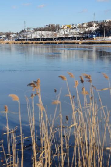 初冬の春採湖をゆく