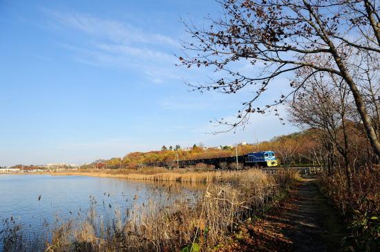 秋色の春採湖畔をゆく
