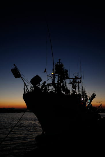 MOO岸壁の漁船
