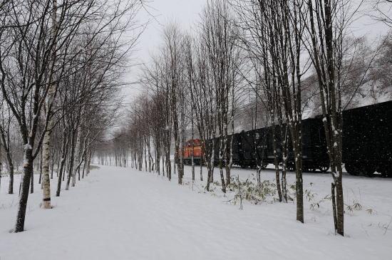 雪の日の遊歩道