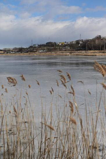 凍った春採湖