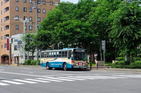 阿寒バス(丹頂カラー)