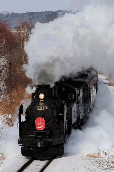 釧網線五十石~標茶間をゆく「SL冬の湿原号」