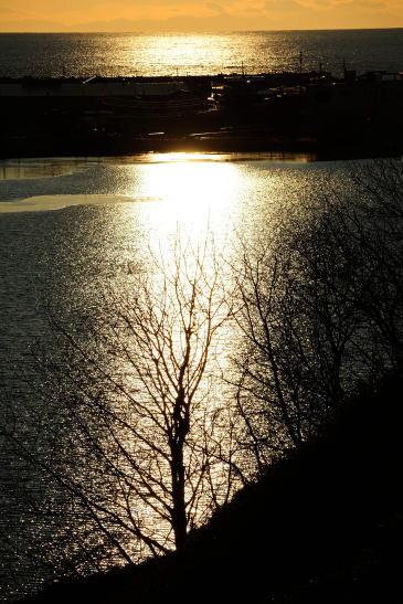 初冬の輝き
