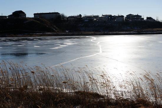 結氷し始めた春採湖