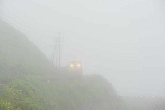 霧の日、釧路埼をゆく