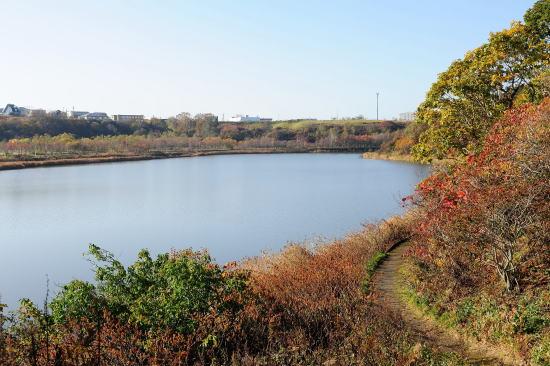 紅葉の春採湖