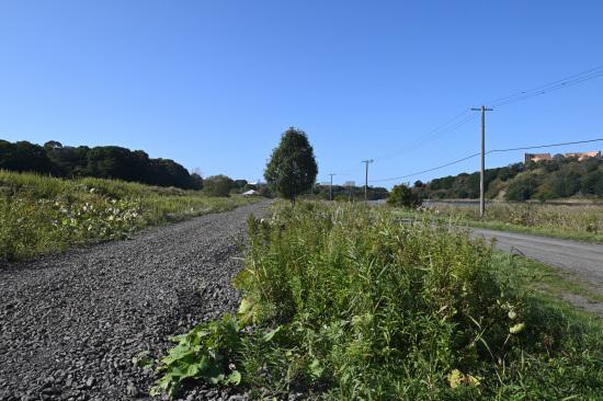 左が線路跡、右が遊歩道