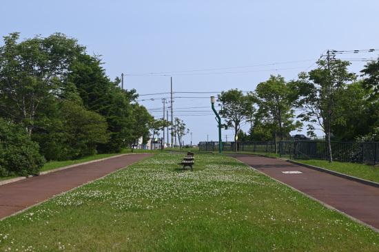 旧国鉄港線跡地