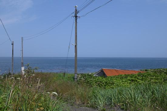 海岸沿いの道